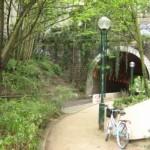 fietsplanteeklein